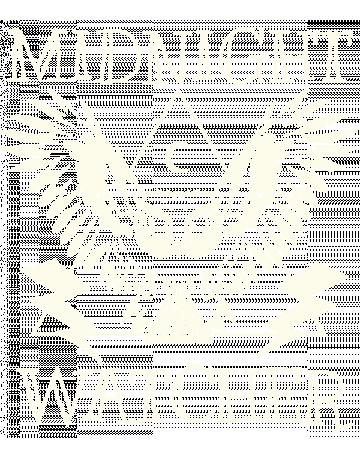 Midnight Watcher