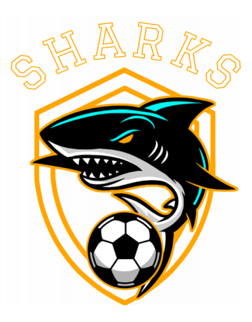 Sharks soccer team